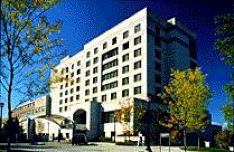cornell hotel school essay Cornell university writing supplement 2017 common application for freshman admission deadlines (online submission/postmark dates) school of hotel administration.